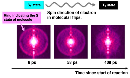 Fig. 2 Image of photoelectrons illustrating electron state of molecule during reaction