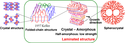 Fig. 1 Structure of conventional polymeric crystal (Image courtesy of Professor Akihiko Toda at Hiroshima University)