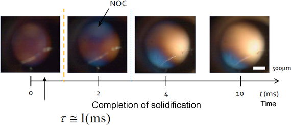 Fig. 5 Crystallization of NOC
