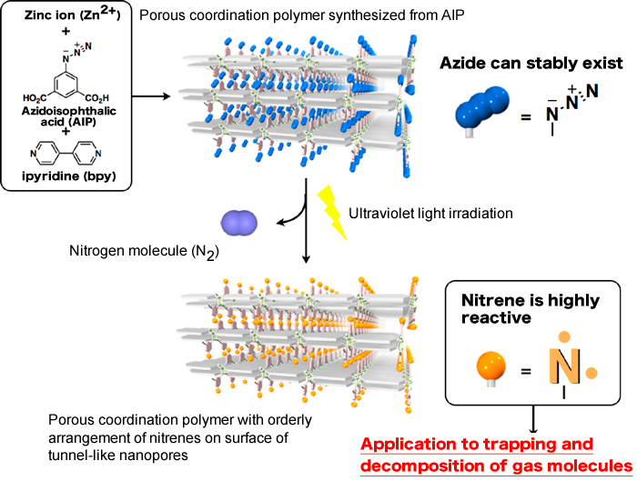 Fig. 2 Introduction of azide (N3) on surface of nanopores in porous coordination polymer to highly reactive nitrene by ultraviolet light irradiation