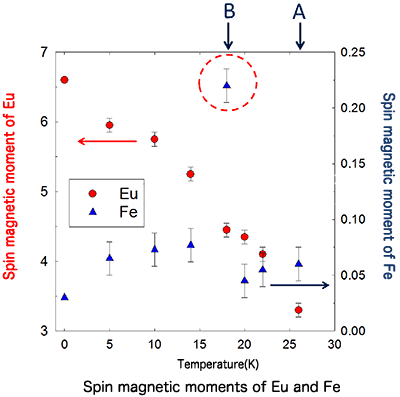 Fig. 5 Temperature-dependent change in spin magnetic moments of Fe and Eu atoms