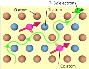 Fig. 5 Schematic of mechanism of ferromagnetism in Co:TiO2
