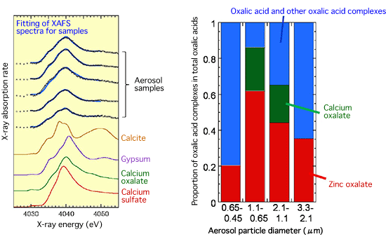 Fig. 3 Identification of calcium oxalate by calcium K-edge XAFS (left) spectroscopy and proportion of calcium oxalate complexes and zinc oxalate complexes in total oxalic acids