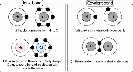 Fig. 2 Illustrations of ionic and covalent bonds