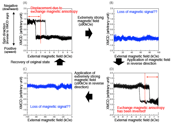 Fig.2. Schematic representation of directional change in exchange magnetic anisotropy under the effect of strong magnetic field