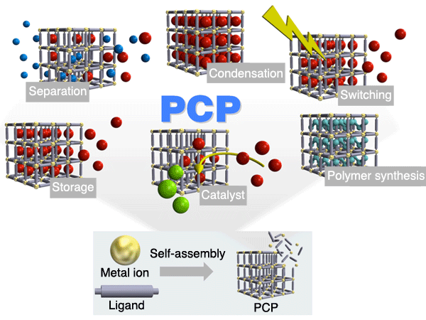 Fig. 1. Architecture of porous coordination polymers (PCPs) and their diverse functions