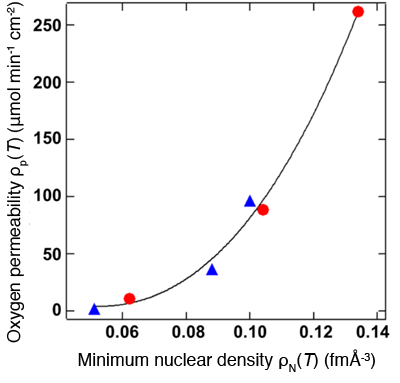 Fig. 5 Oxygen permeability ρP(T) increases with the increase in minimum nuclear density ρN(T).