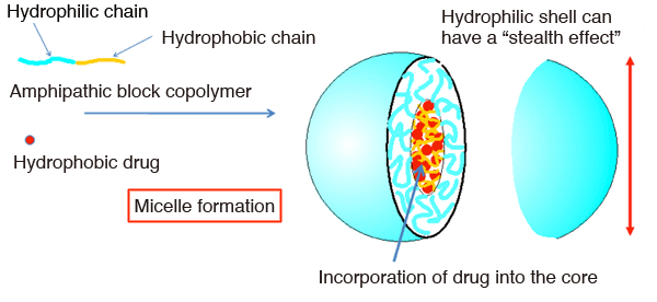 Fig. 1: Overview of a polymer micelle