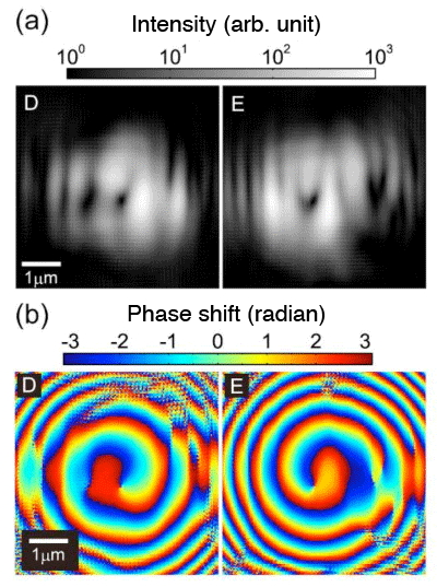 Fig. 4	(a) Intensity and (b) phase distribution of an X-ray vortex beam obtained by wave optics simulation.  (Phase singularities D and E in Fig. 3 were irradiated with X-rays and the wave field of the diffraction wave transmitted 10 mm from the sample was calculated.)