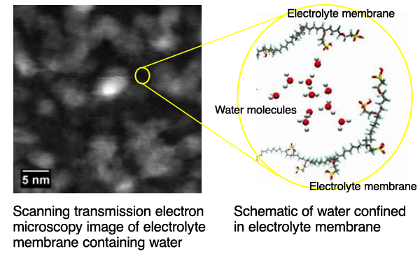 Fig. 2		Scanning transmission electron microscopy image of electrolyte membrane containing water (left) and schematic of water molecules confined in a domain of approximately two nanometers by molecules in the electrolyte membrane (right)