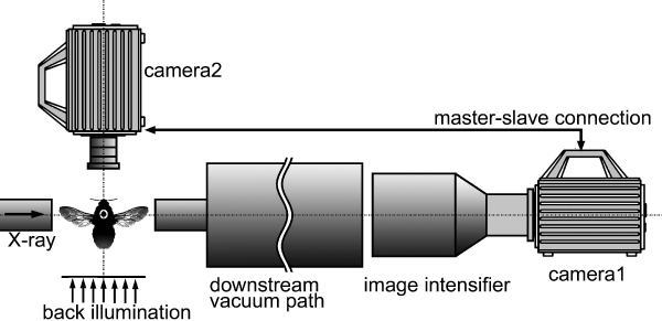 Fig. 2. Experimental setup.