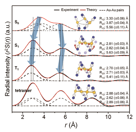 Fig. 2. Observed changes in the molecular structure of the gold complex