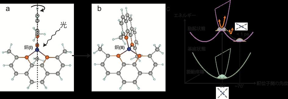 図1:銅(I)フェナントロリン錯体の構造変化。