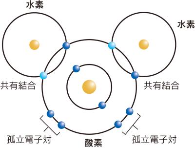 図2.水分子および共有結合の模式図